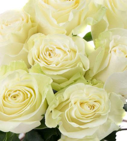 Roses blanches mondial Fleuriste Neuville sur Saône Fleurs mariage Lyon Livraison Cours art floral deuil Livraison express Fleuriste interflora