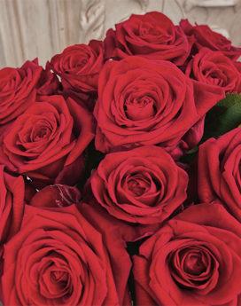bouquet roses rouges freedom amour fleuriste lyon neuville sur saone idée cadeau