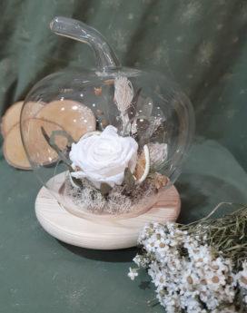 Rose sous cloche Petite gourmandise Fleuriste Neuville sur Saône Fleurs mariage Lyon Livraison Cours art floral deuil Livraison express Fleuriste interflora
