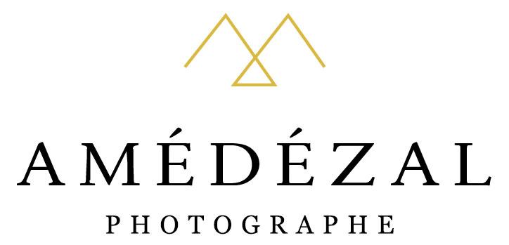photographe mariage lyon amedezal